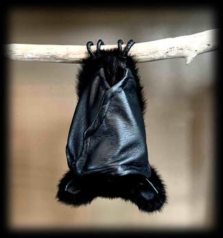 Black Bat .jpg