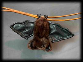 Bat 5 .jpg