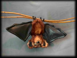 Bat 4 .jpg
