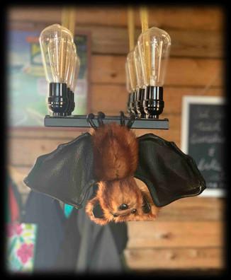 Bat 3 .jpg