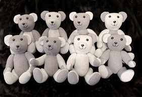 Terry Bear 3 .jpg