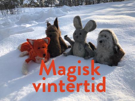 Magisk vintertid