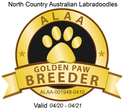 Northcountry Golden Paw 2020.png