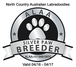ALAA Silver Paw Logo 2016-2017.png