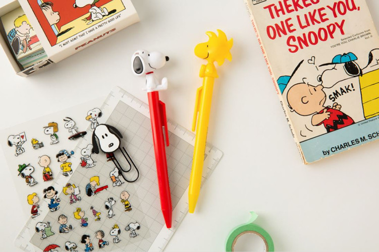 10x10 Snoopy Moving Pen