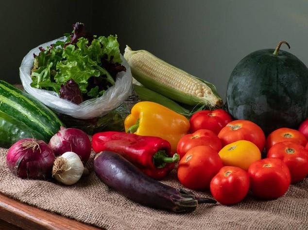 small vegetable share_7b.jpg