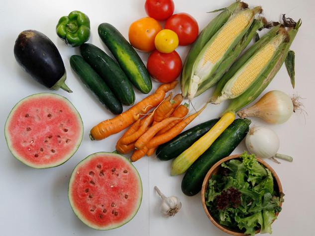 small vegetable share_2.jpg