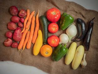 small vegetable share_8.jpg