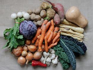large vegetable share_10.jpg