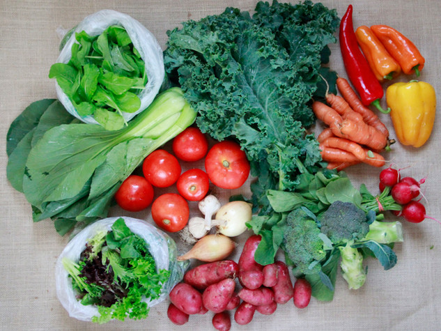 large vegetable share_3.jpg