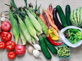 large vegetable share_1.jpg