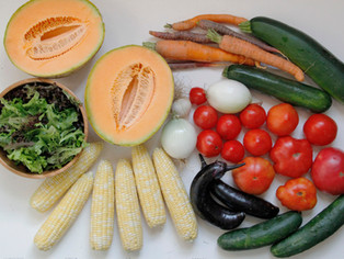 small vegetable share_3.jpg