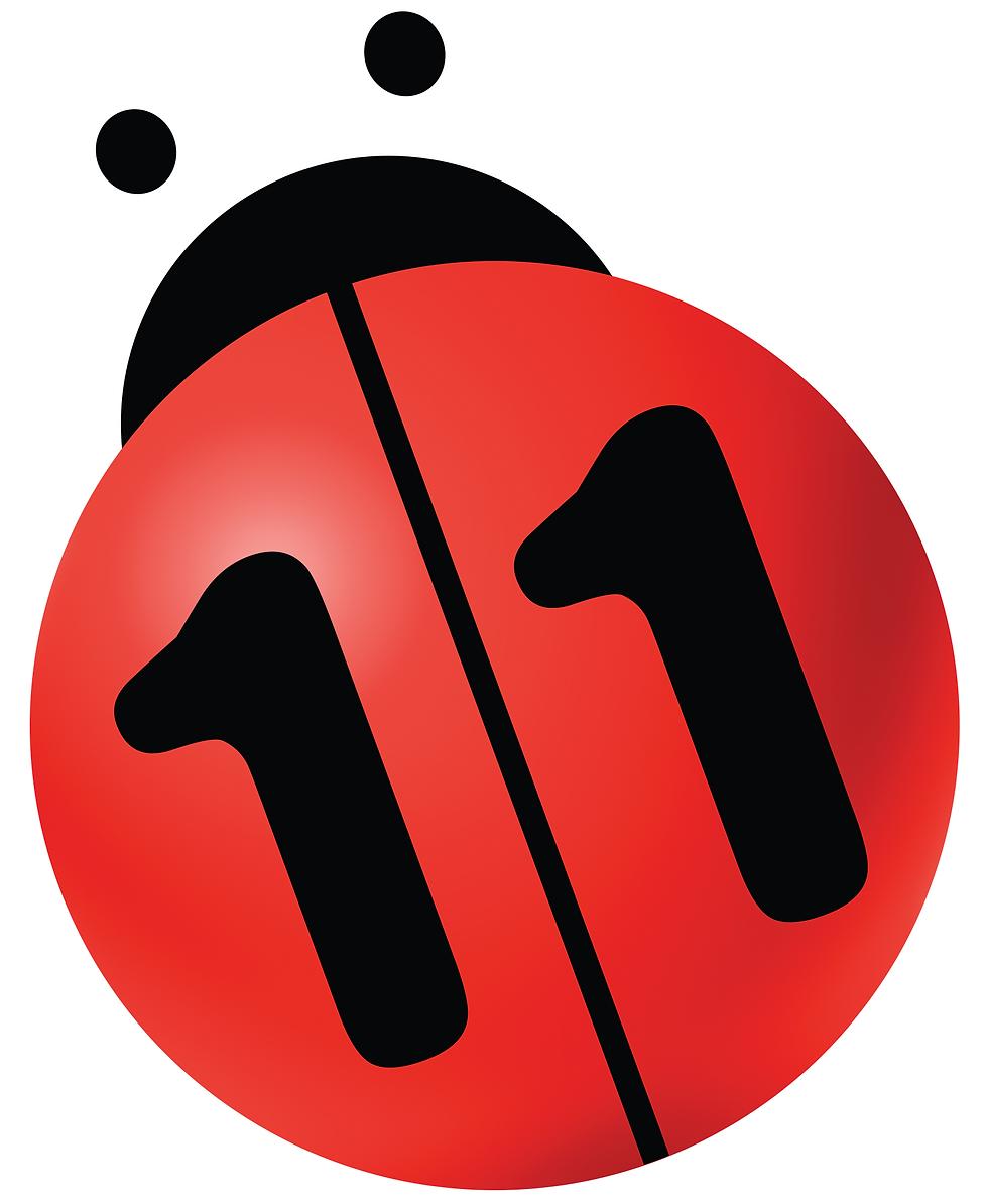 logo-n11-ladybug-large