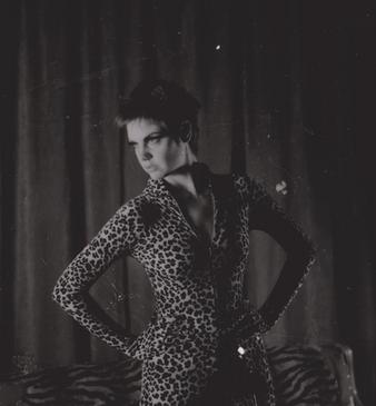 nadia shebang cat suit.png