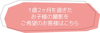 page_ゼロワン_pink2.png