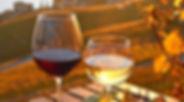 Wine&Food experience in Piemonte