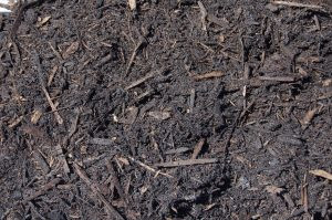 Premium Bushland Mulch