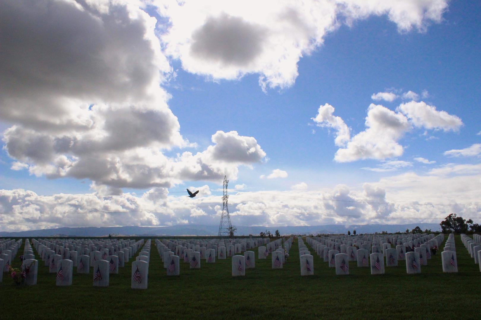 Veteran's Cemetery