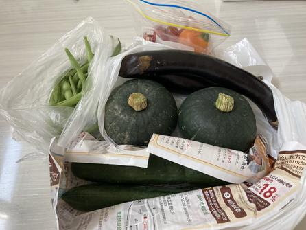 新鮮夏野菜