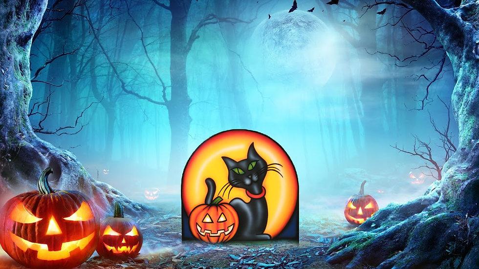Thin Cat Moon Pumpkin