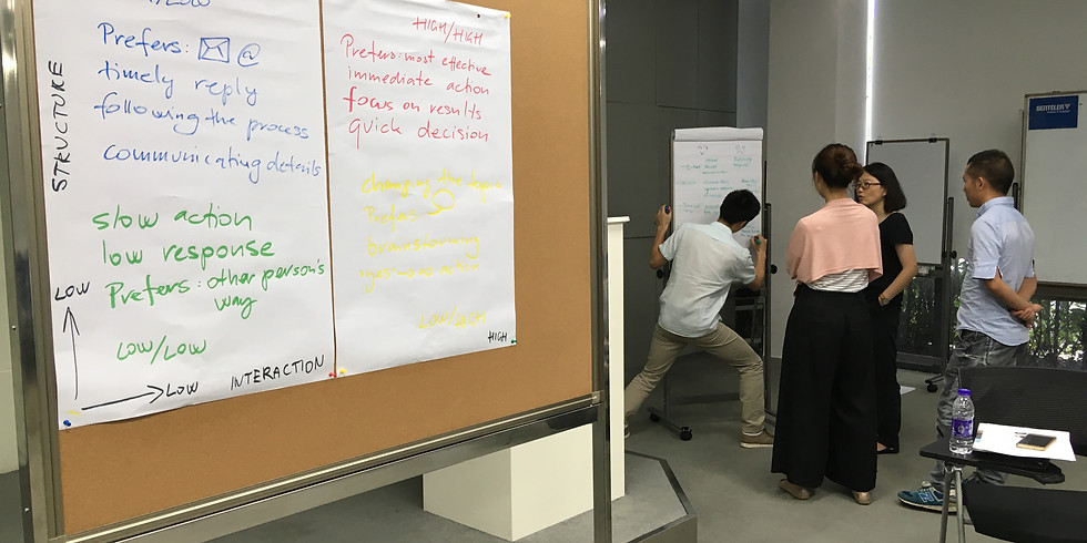 Half-day workshop: Mapping a Team's Personal & Cultural Strengths (Shanghai)