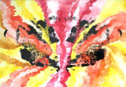 Eruption jazzy