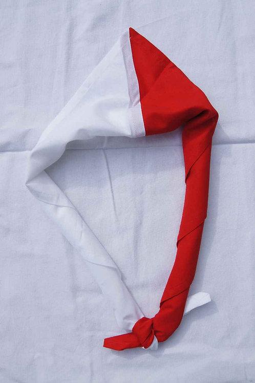 Krawatte Pfadi Pfäffikon