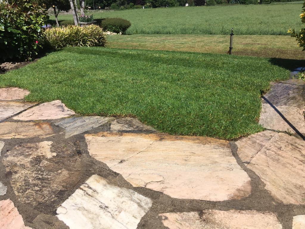 Fuchs Réalisations - terrasse pierre