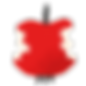 logo jobin 1 pomme_web_3.png
