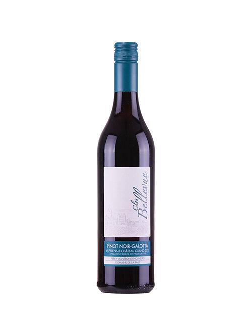 Clos Bellevue - Pinot noir, Galotta