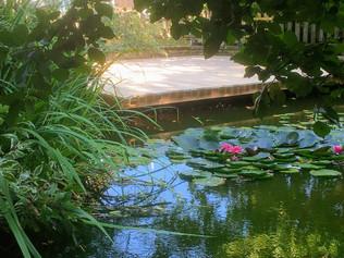 des mélèzes - étangs