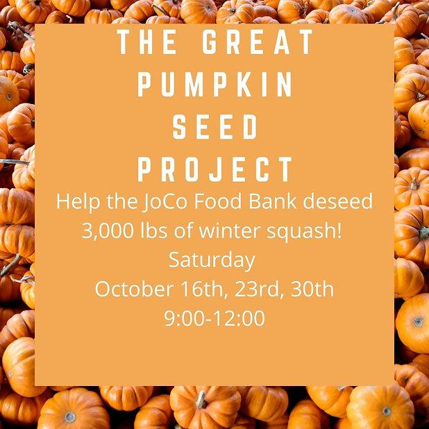 Pumpkin Seed Project.jpg