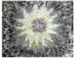 Meditations-_-Epiphanies-2.jpg