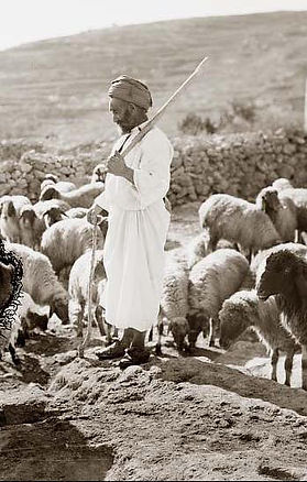 Shepherd-Staff-Rod.jpg
