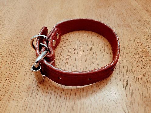 Adjustable Dog Collar -- Firehose Red - Large