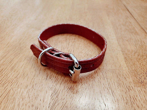 Adjustable Dog Collar -- Firehose Red -- Small