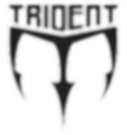 TRIDENT[63821].png