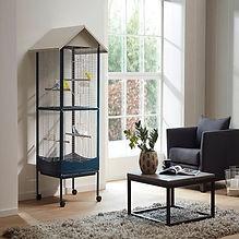 ideal cockatiel cage