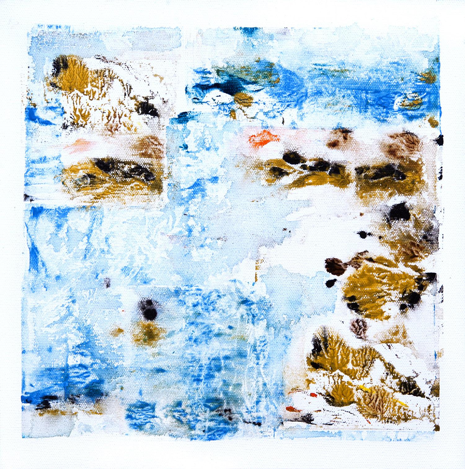 Bifurcarias, acrilico sobre lienzo, 30x30cm, 2014.jpg