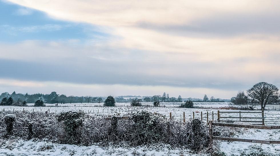 winter (15).jpg