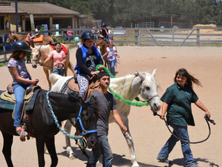 4H All Star Project- A Day of Horsey Fun