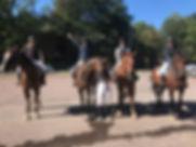 Hästdiv2.jpg
