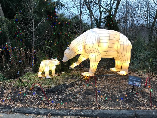 Zoo, Festival of Lights