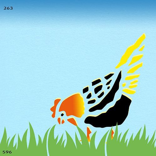 263 שבלונה תרנגולת