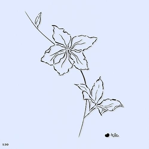 530 שבלונה פרחי בוהנייה