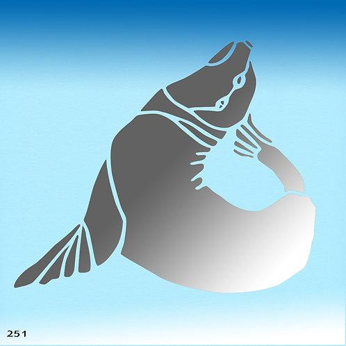 251 שבלונה כלב ים / אריה ים
