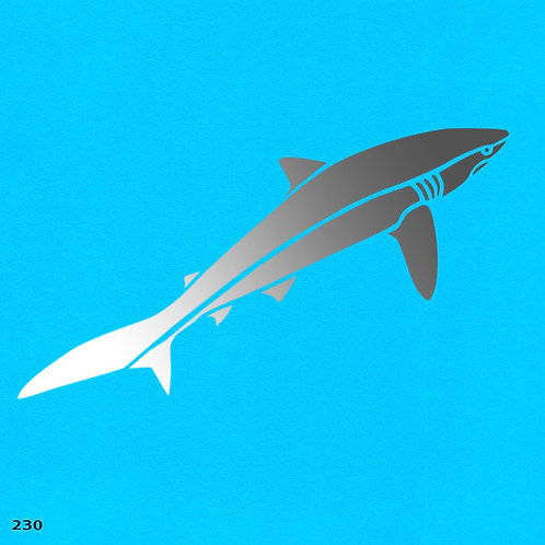 230 שבלונה כריש