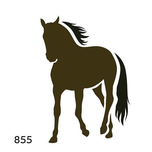 855 שבלונה סוס