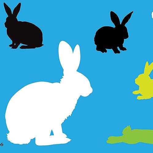736 שבלונה ארנבים