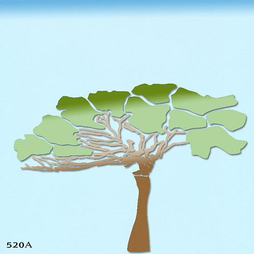520A שבלונה עץ שיטה סוככנית